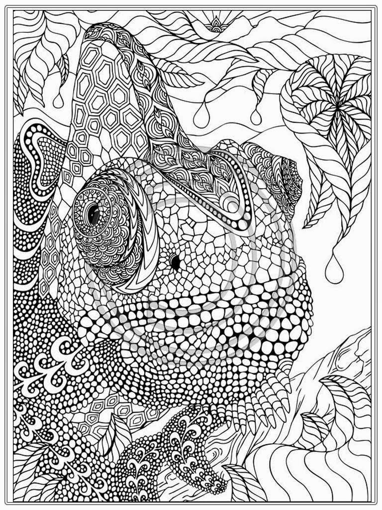 Coloring Pages Ideas: Coloring Pages Ideas Adult Page Home 9C4Bbgagi   Free Printable Coloring Cards For Adults
