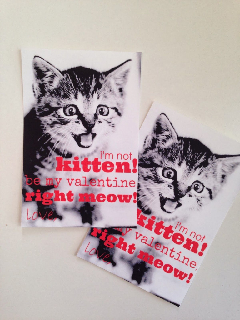 Crazy Cat Valentines {Easy Preschool Valentines With A Free Printable!} | Free Printable Cat Valentine Cards