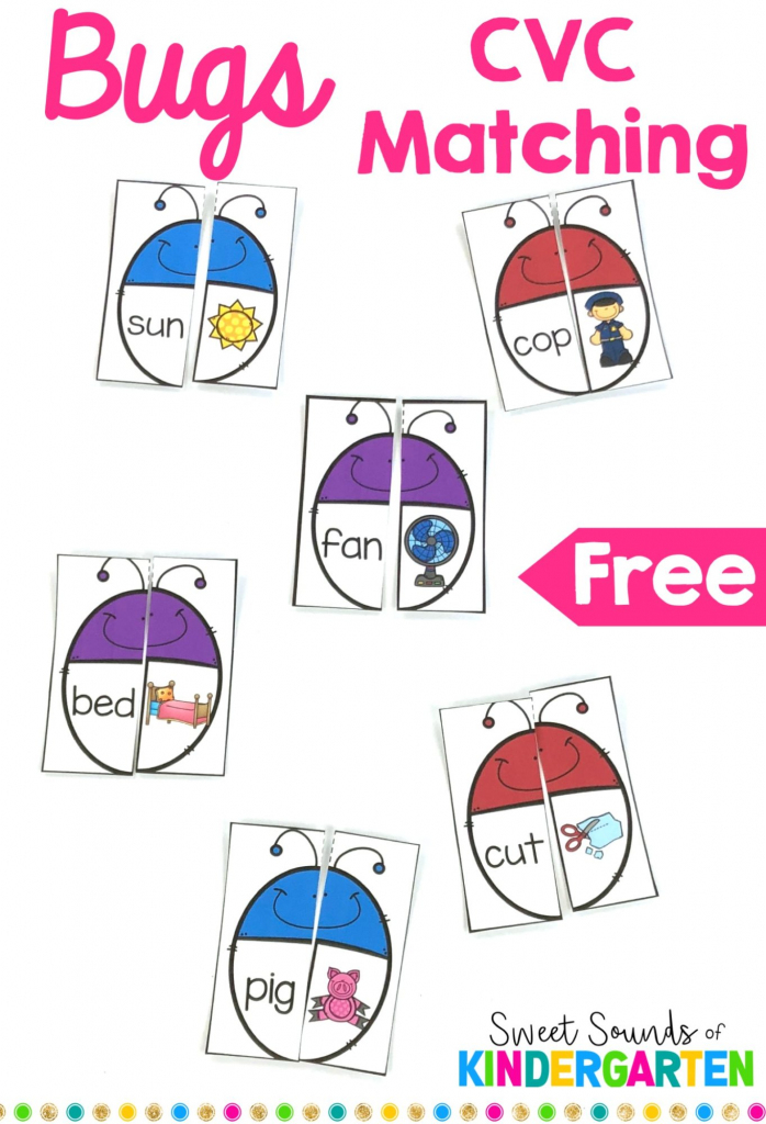 Cvc Bugs Matching Game   Cvc Picture Cards Printable
