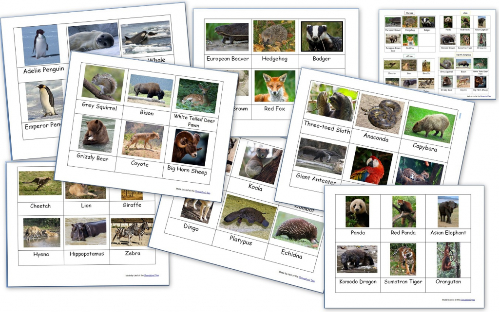 Free Montessori 3-Part Cards Archives - Homeschool Den | Free Printable Animal Classification Cards