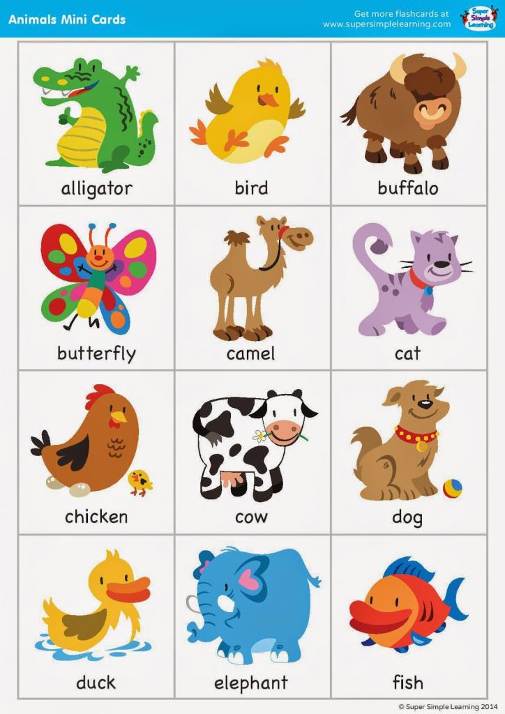 Free Printable Animal Flash Cards   Pictureicon   Animal Snap Cards Printable