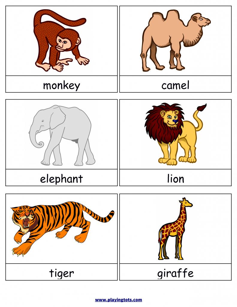 Free Printable Animals Flash Cards | Free Printable For Learning | Free Printable Animal Cards