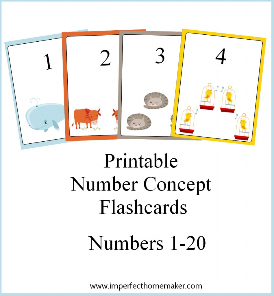 Free Printable Number Concept Flashcards - How To Homeschool For Free | Printable Number Cards 1 20