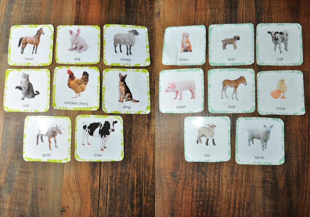 Montessori Inspired Farm Animal Cards | This Girl's Canon | Farm Animal Cards Printable