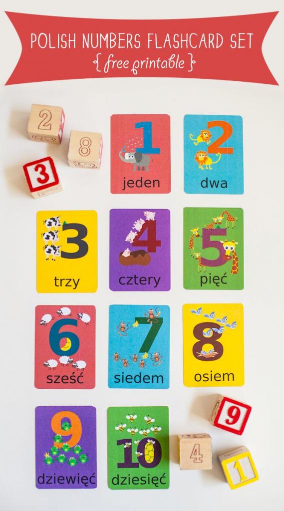 Polish Numbers Flashcard Printable | Cute Printables | Polish | Us Citizenship Flash Cards Printable