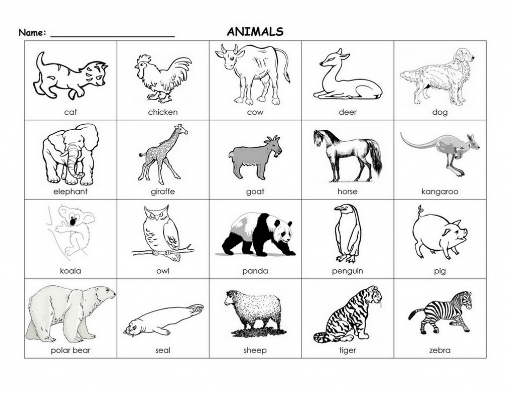 Printable Animal Flash Cards (87+ Images In Collection) Page 1   Animal Snap Cards Printable