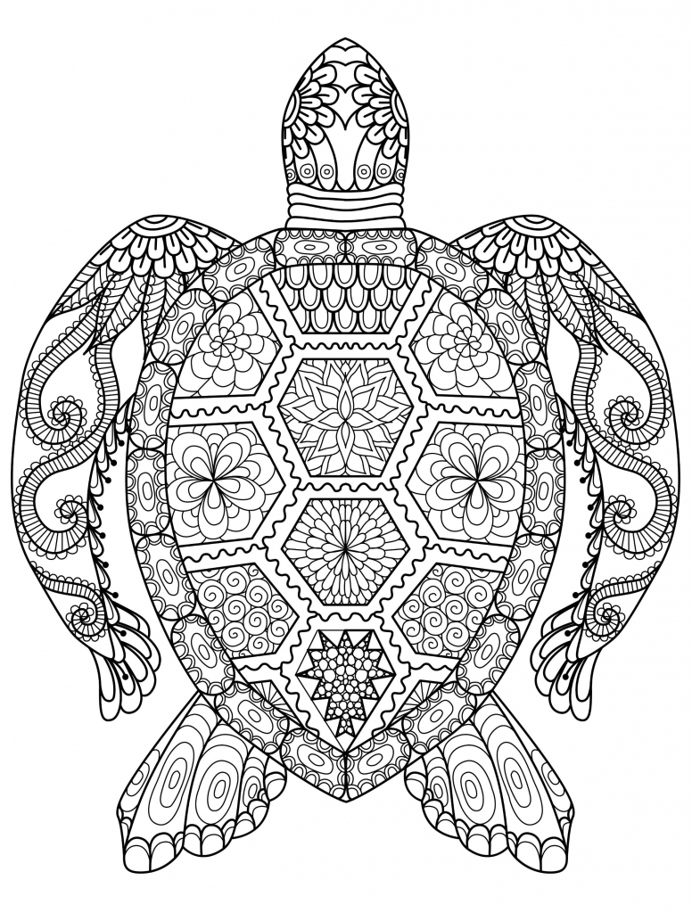 Sea Turtle Coloring Page For Adults For Free Download   Cards   Free Printable Coloring Cards For Adults