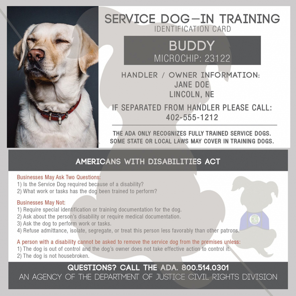 Seeking Simple Solutions For Dogs? Look No Further! | Printables | Printable Ada Service Dog Card